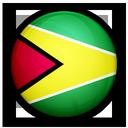 1480441327_flag_of_guyana